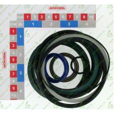 10189040 Ремкомплект гідроциліндра 32 X 88,9 REF 6100779